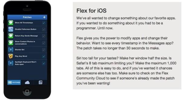 flex2-feat